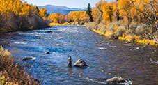 Wade Fly Fishing Upstream