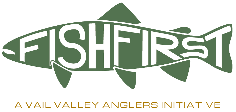 Fish First A Vail Valley Anglers Initiative