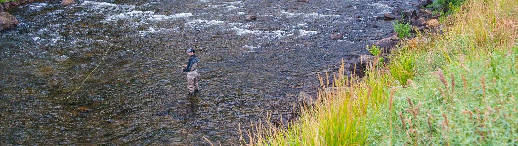 Vail Valley Anglers Guided Wade Fly Fishing Trips in Vail, Colorado