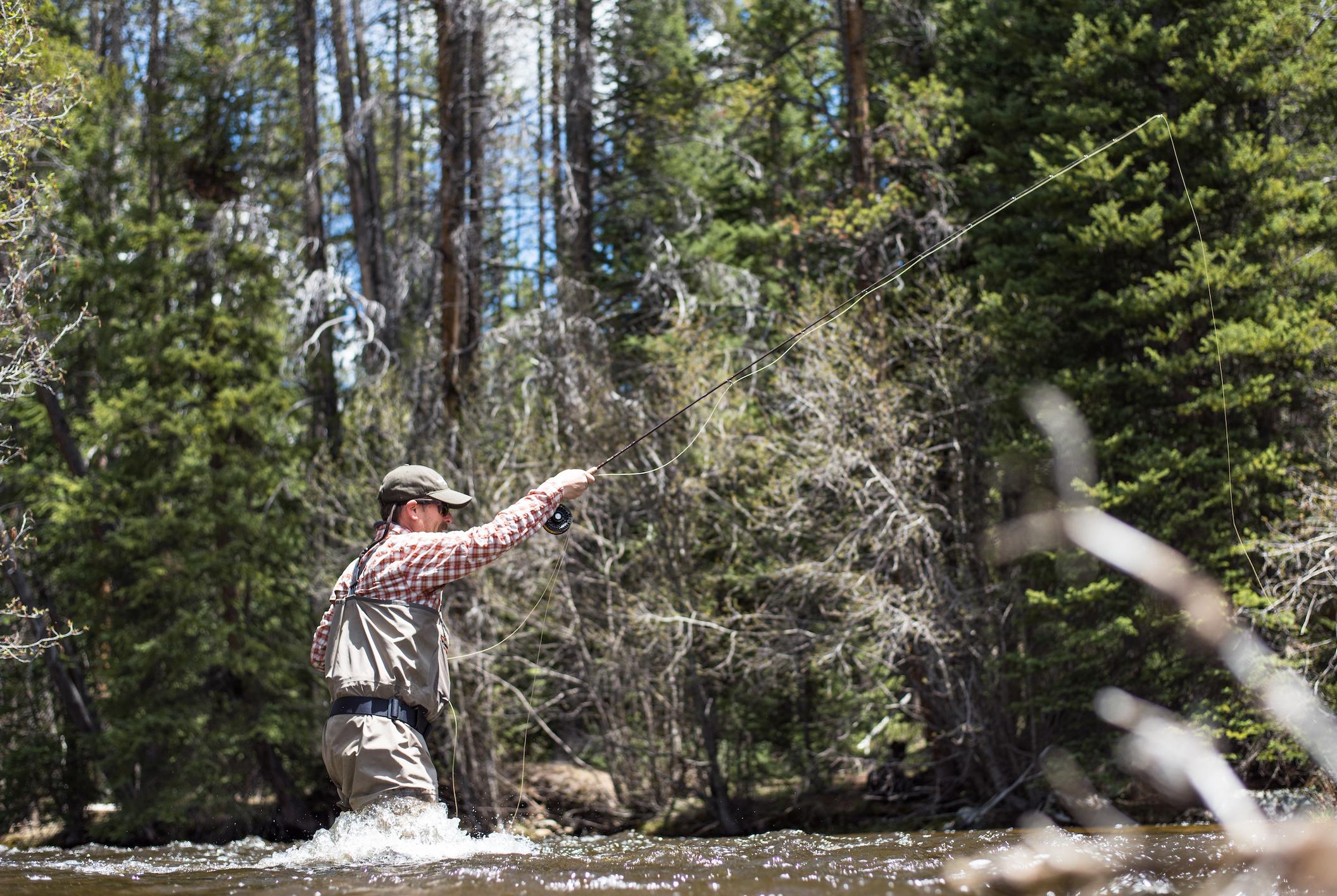 Gore Creek Fishing Report | Colorado Fishing Conditions & Flows