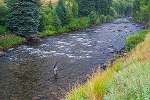Vail Valley Anglers Guided Fly Fishing Wade Trips in Vail, Colorado.