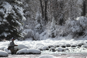 Vail Valley Anglers Guided Fly Fishing Winter Trips in Vail, Colorado.