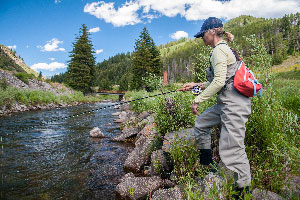 Vail Valley Anglers Guided Fly Fishing Full Day Wade Trips in Vail, Colorado.