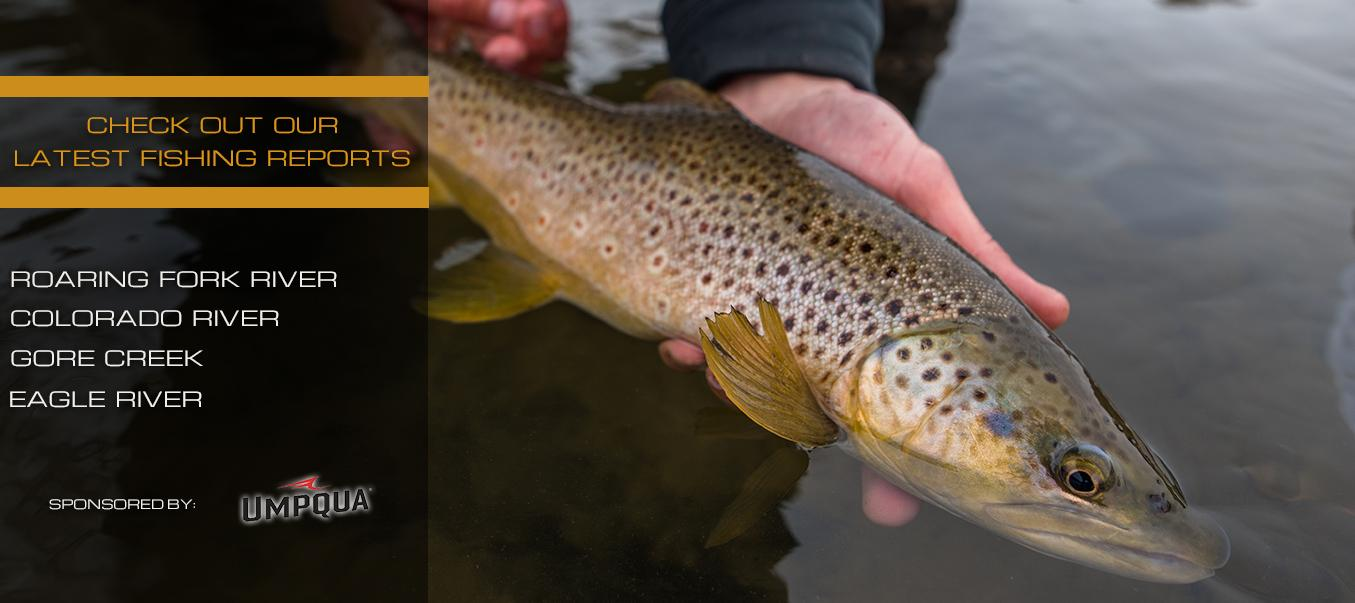 Vail Valley Anglers in Edwards, CO | Fly Shop and Guide Service